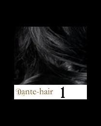 Dante Flex S1