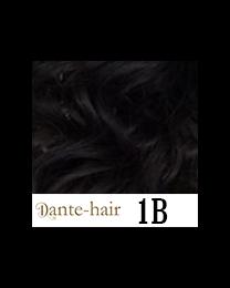 Dante Flex S1B
