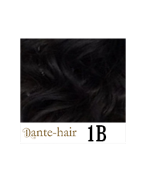 Dante Tail S1B