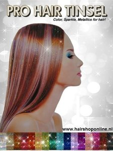 Poster Hairtinsels A4 formaat