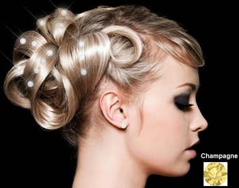 Hair Crystals - Champagne (36 stuks)