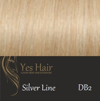 Yes Hair Extensions Silver Line 55/60 cm NS kleur DB2