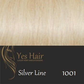 Yes Hair Extensions Silver Line 55/60 cm NS kleur 1001